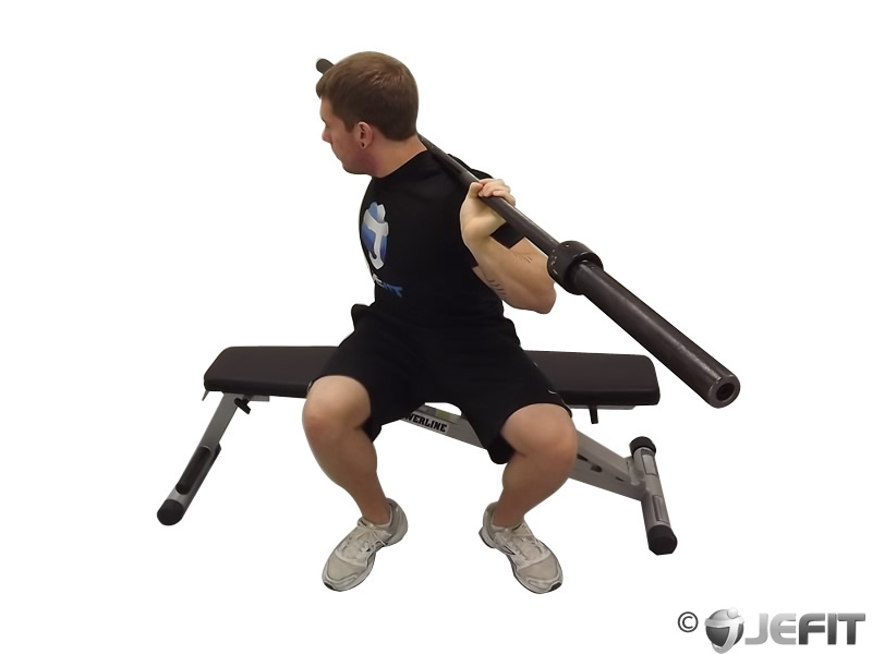 Barbell Seated Twist Exercise Database Jefit Best