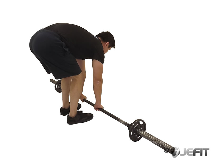 Barbell Ab Rollout Exercise Database Jefit Best