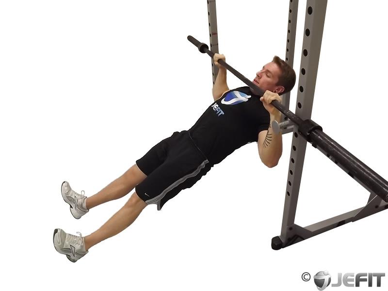 Barbell Body Row - Exercise Database | Jefit - Best ...