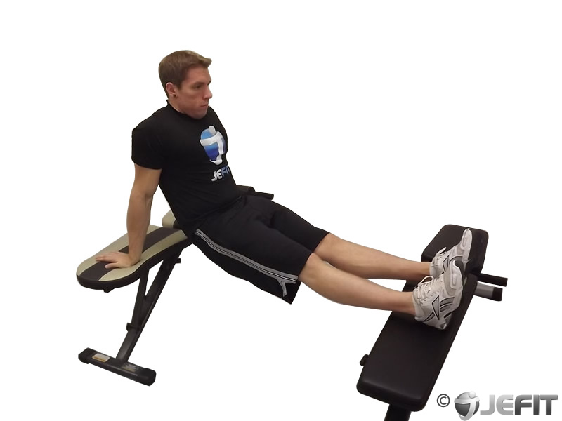 Bench Dip Exercise Database Jefit Best Android And