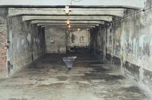 Dead Jews Gas Chambers
