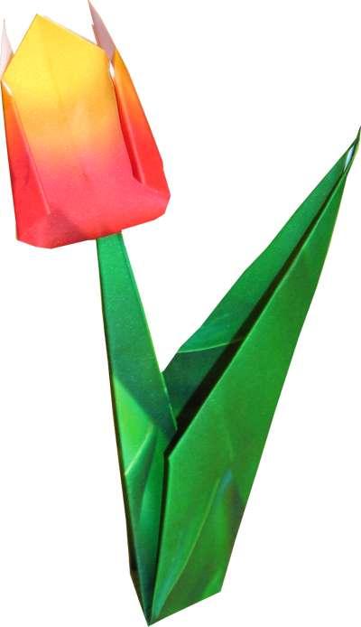 Origami carnation flower mightylinksfo