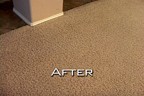 San Diego Carpet Dyeing Services   Carpet Dyeing in San Diego CA     San Diego Carpet After