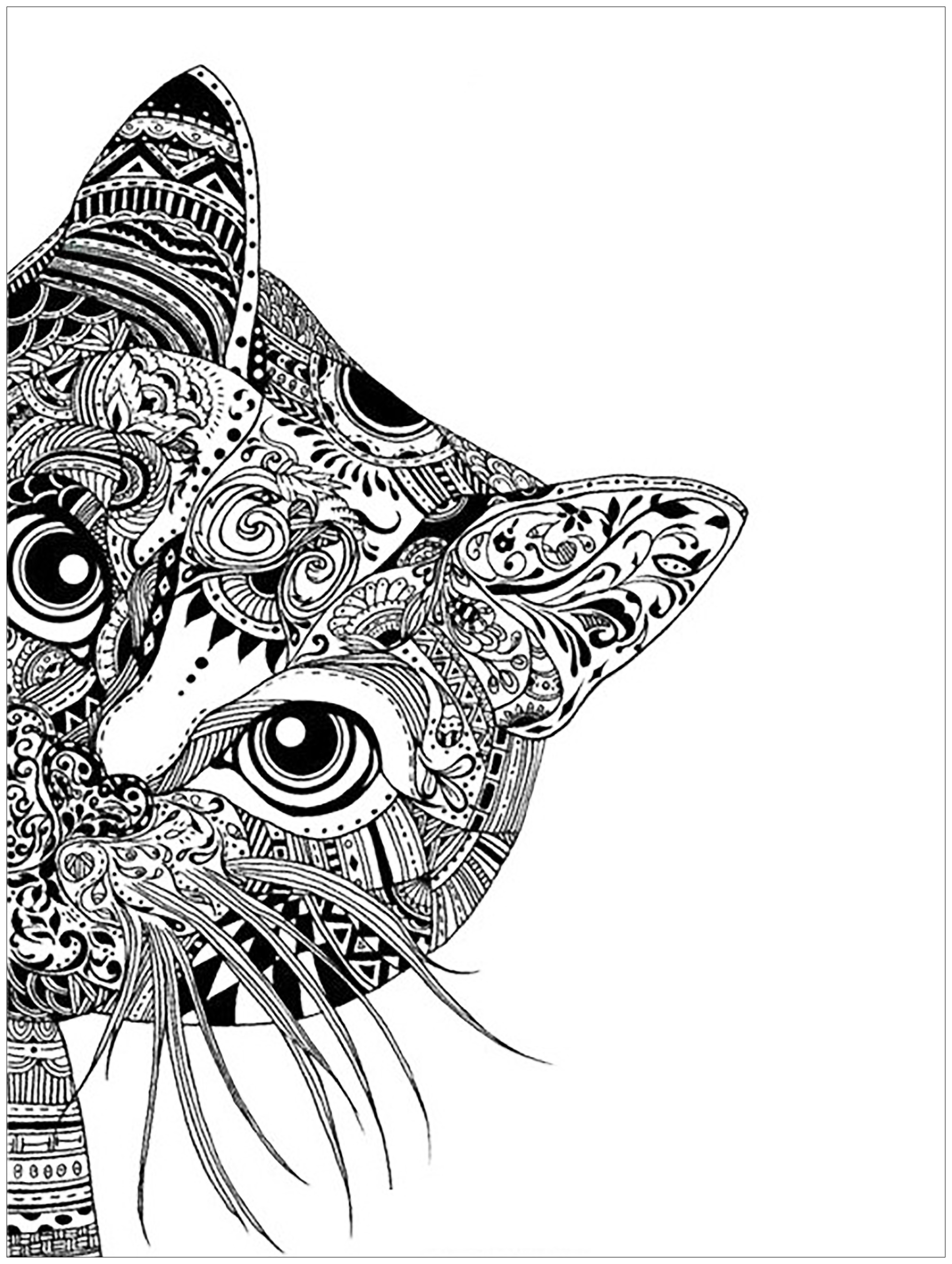 Pages Cat Head Cats Coloring Pages For Adults Justcolor