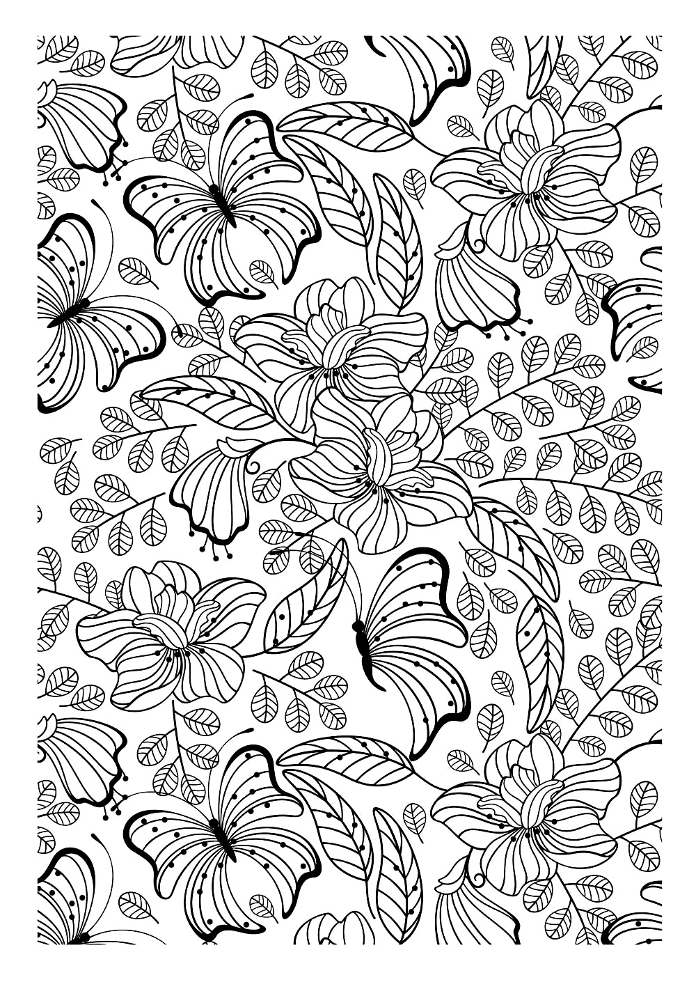 Butterflys Butterflies Insects Coloring Pages For Adults