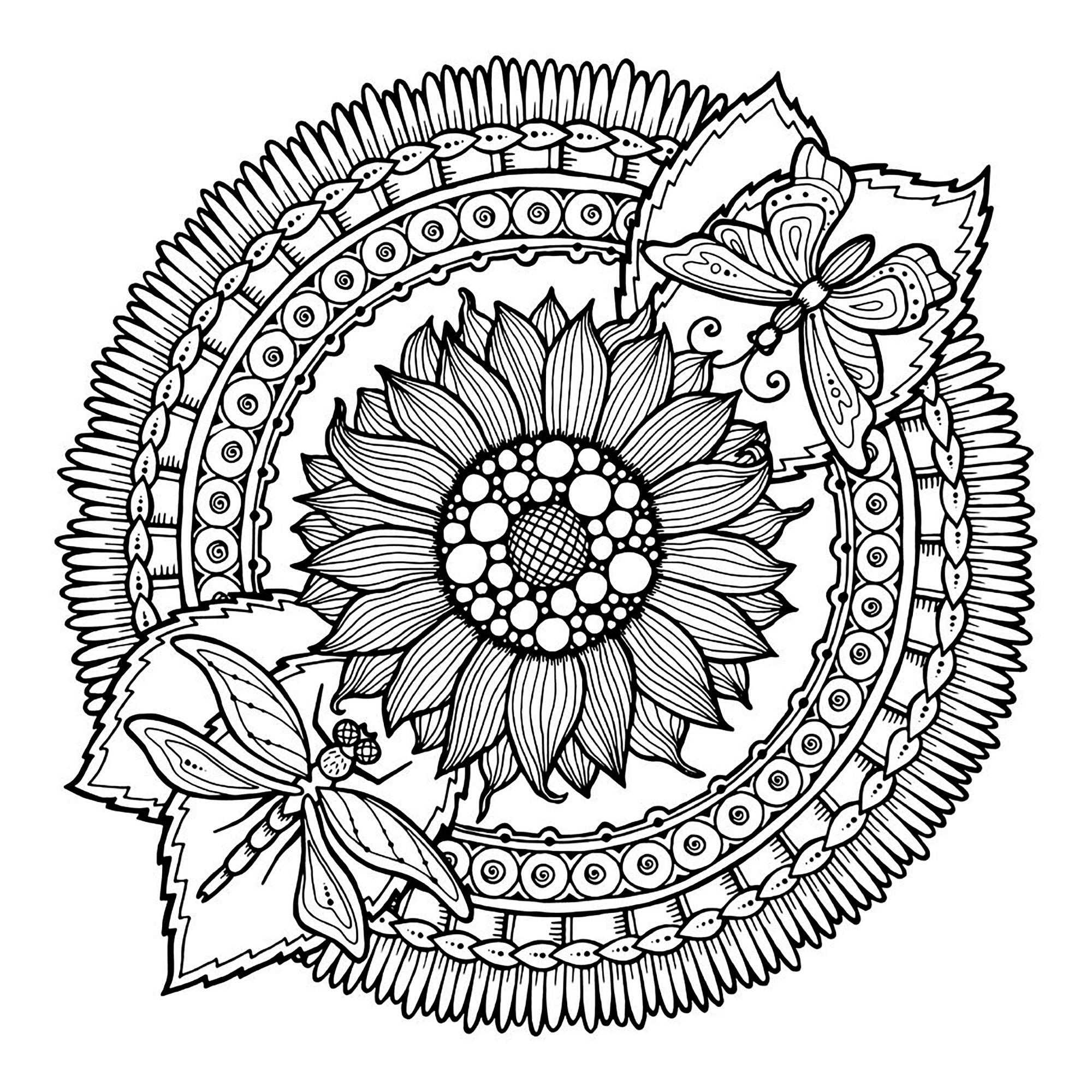 Pages Mandala Dragonfly And Flowers By Juliasnegireva Mandalas