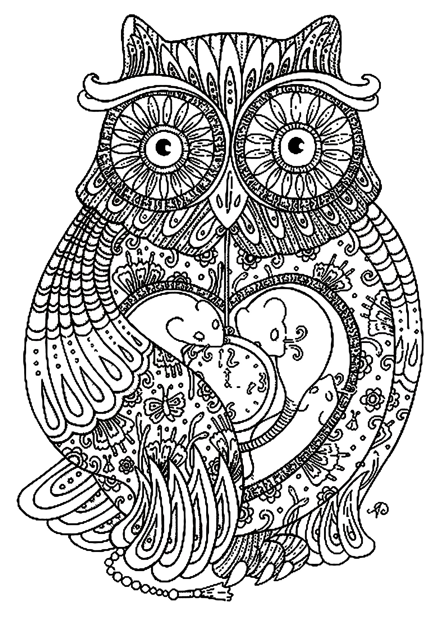 Big Owl Owls Coloring Pages For Adults Justcolor