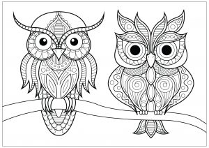 owl color pages # 2