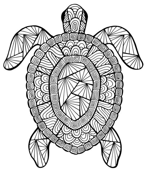 coloring pages turtle # 4