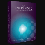 Intrinsic WSO OTO Upsell System by Trevor C Review – Best Training Guide Reveal the Fastest and Easiest Way to Crack it as an Affiliate, Get a Real Buyer List and Gone From Nowhere to Consistent THREE and FOUR Figure Days