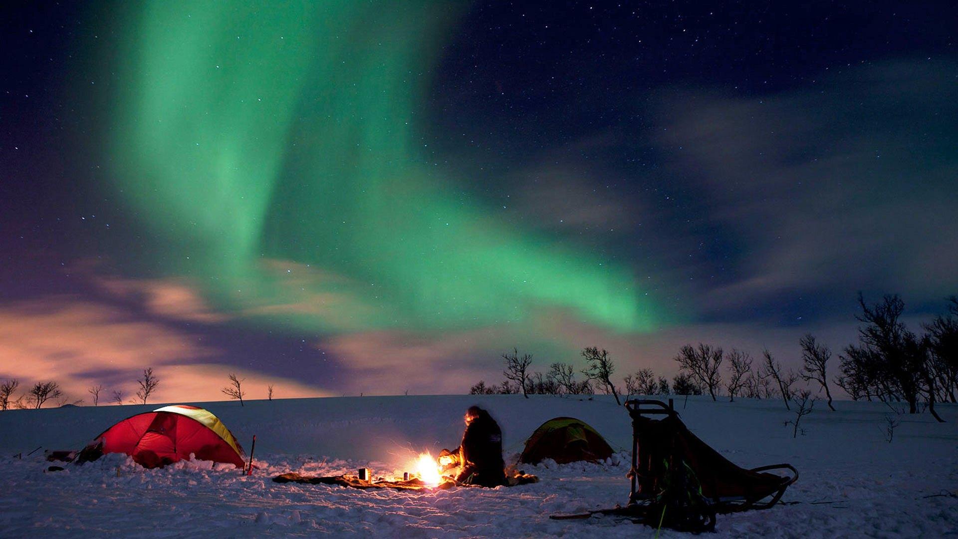 Read Northern Lights Online Free
