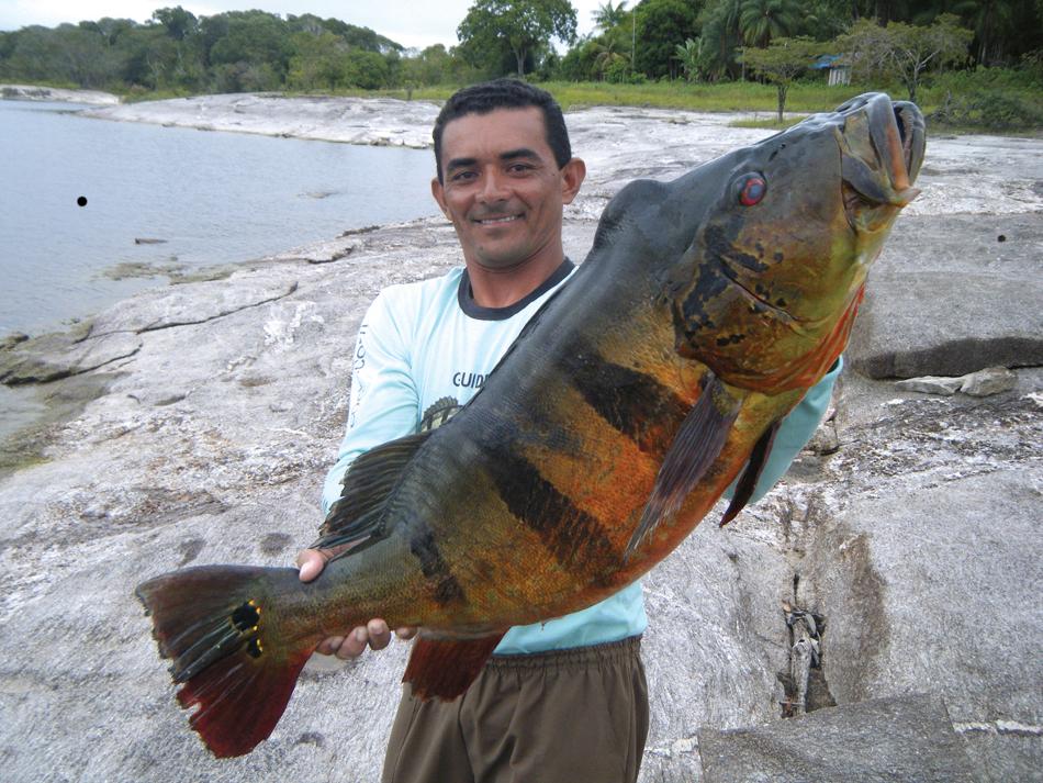 Biggest Catfish Caught Lake Livingston