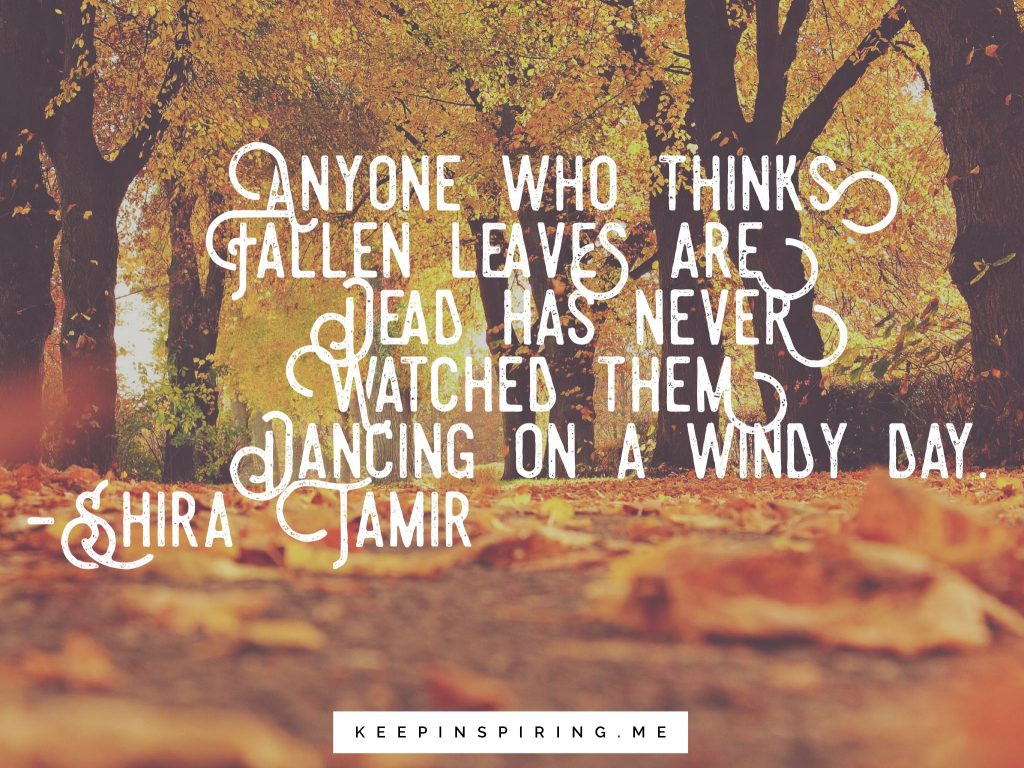 Windy Weather Funny Autumn Quotes