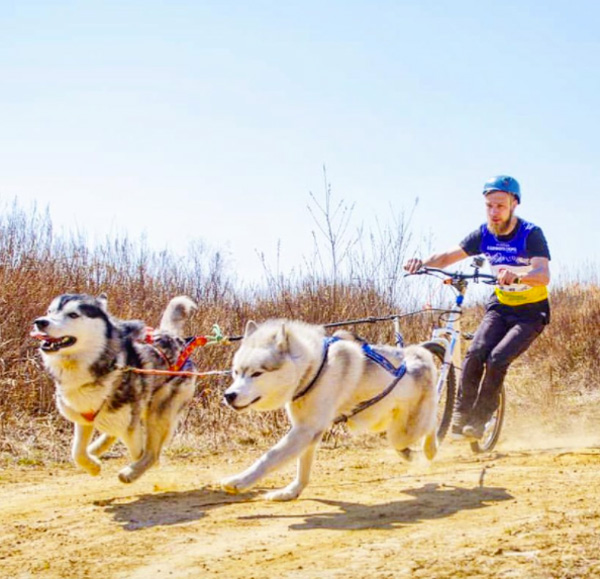 Bike Leash Dogs Review