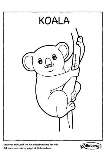 Koala Coloring Page Free Printables For Your Kids