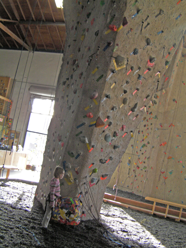 Rock Wall Home Climbing Gym