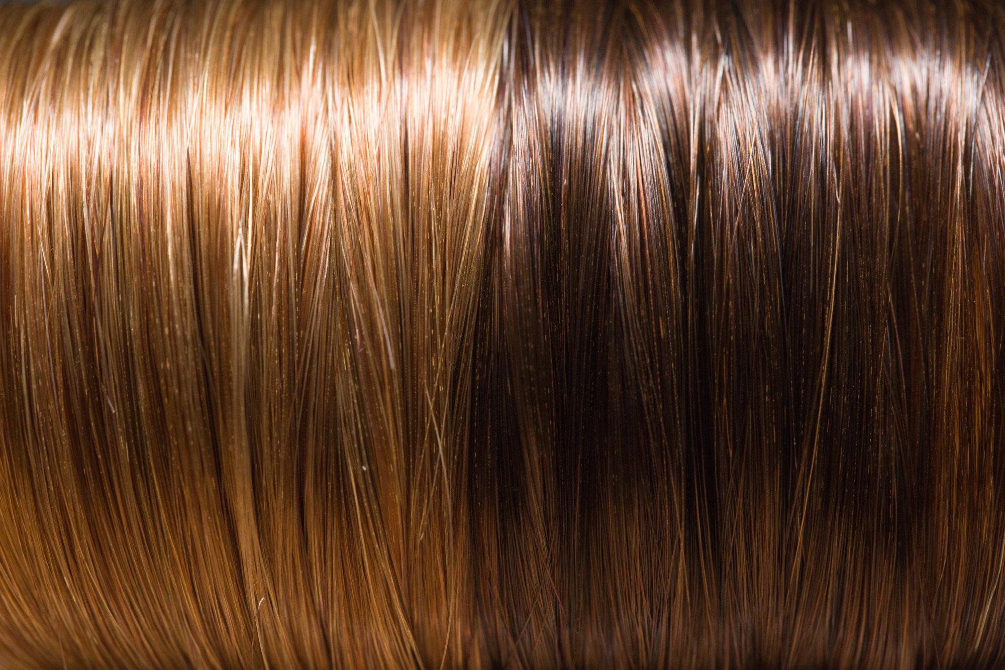 Brown Light Color Hair