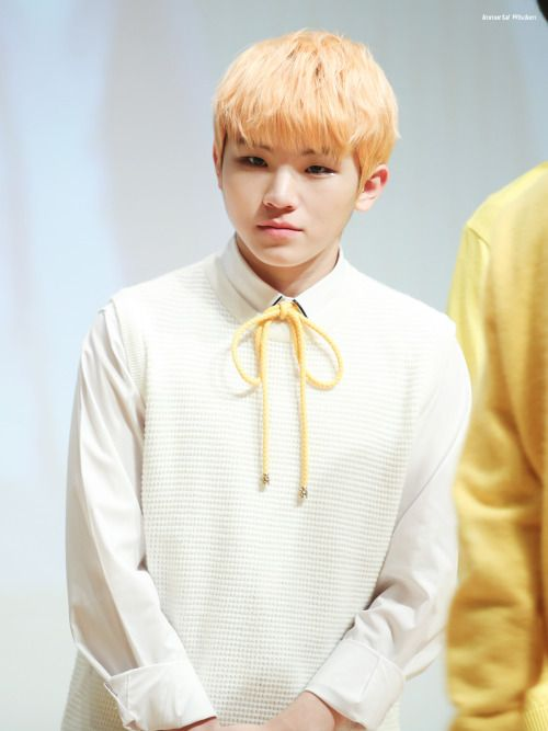 7 Best Pastel Hair Colors From Seventeen Woozi Koreaboo