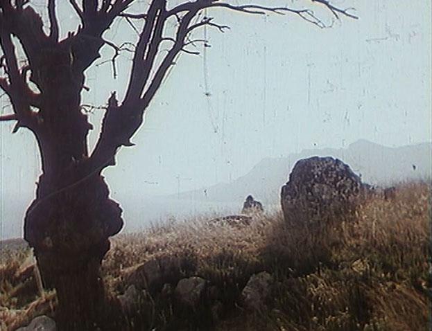 Ағашта пинокчиодан ілулі эпизод саябақтың жанындағы баурайда жойылды. Бираро-Кастрополь жоталарының сипаттамалық құрылымдарының артында көруге болады.