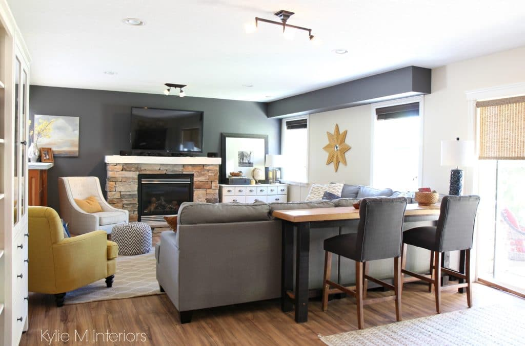 Family Room Decorating Themes