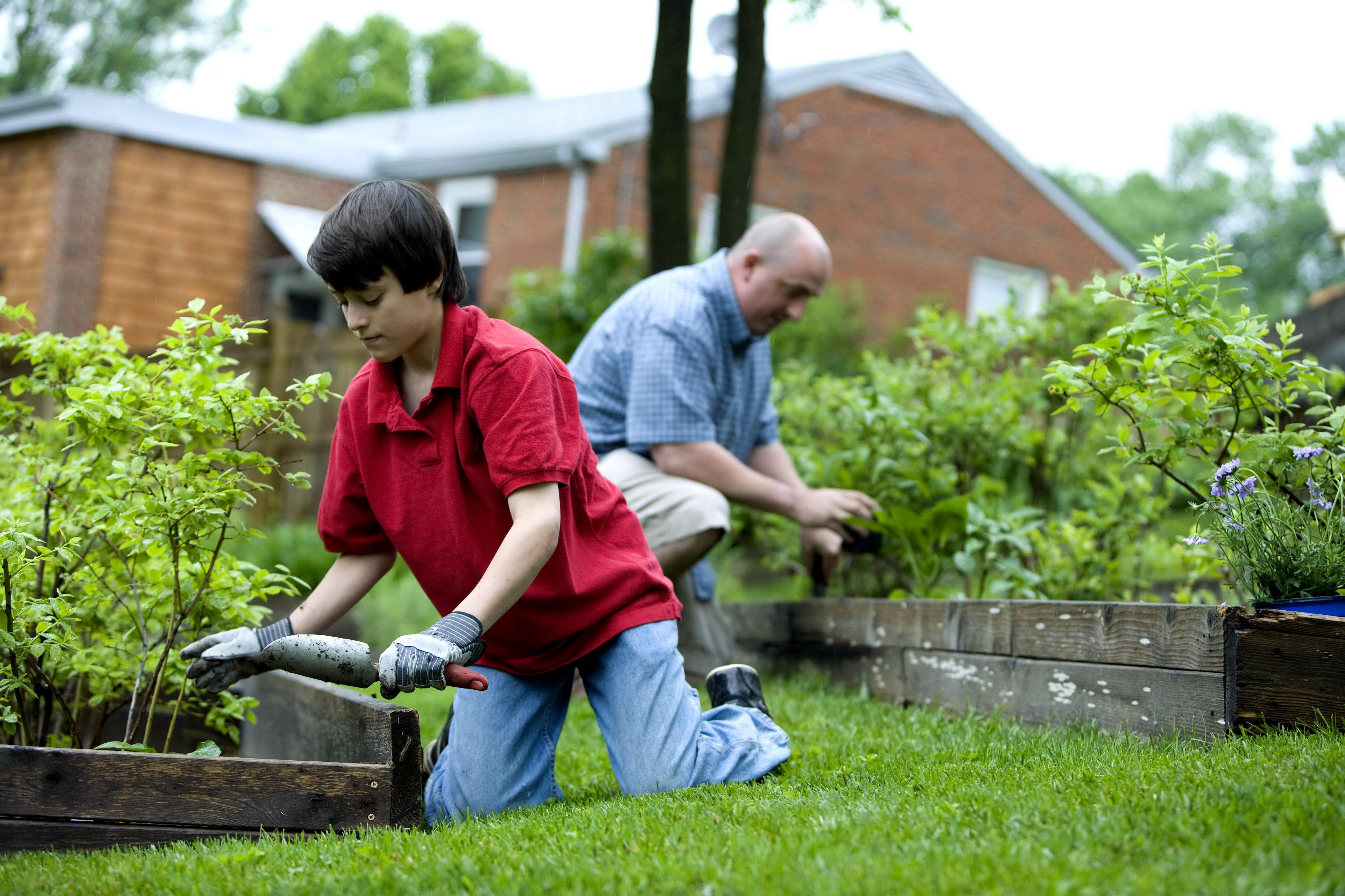 people gardening pictures - HD5530×3686