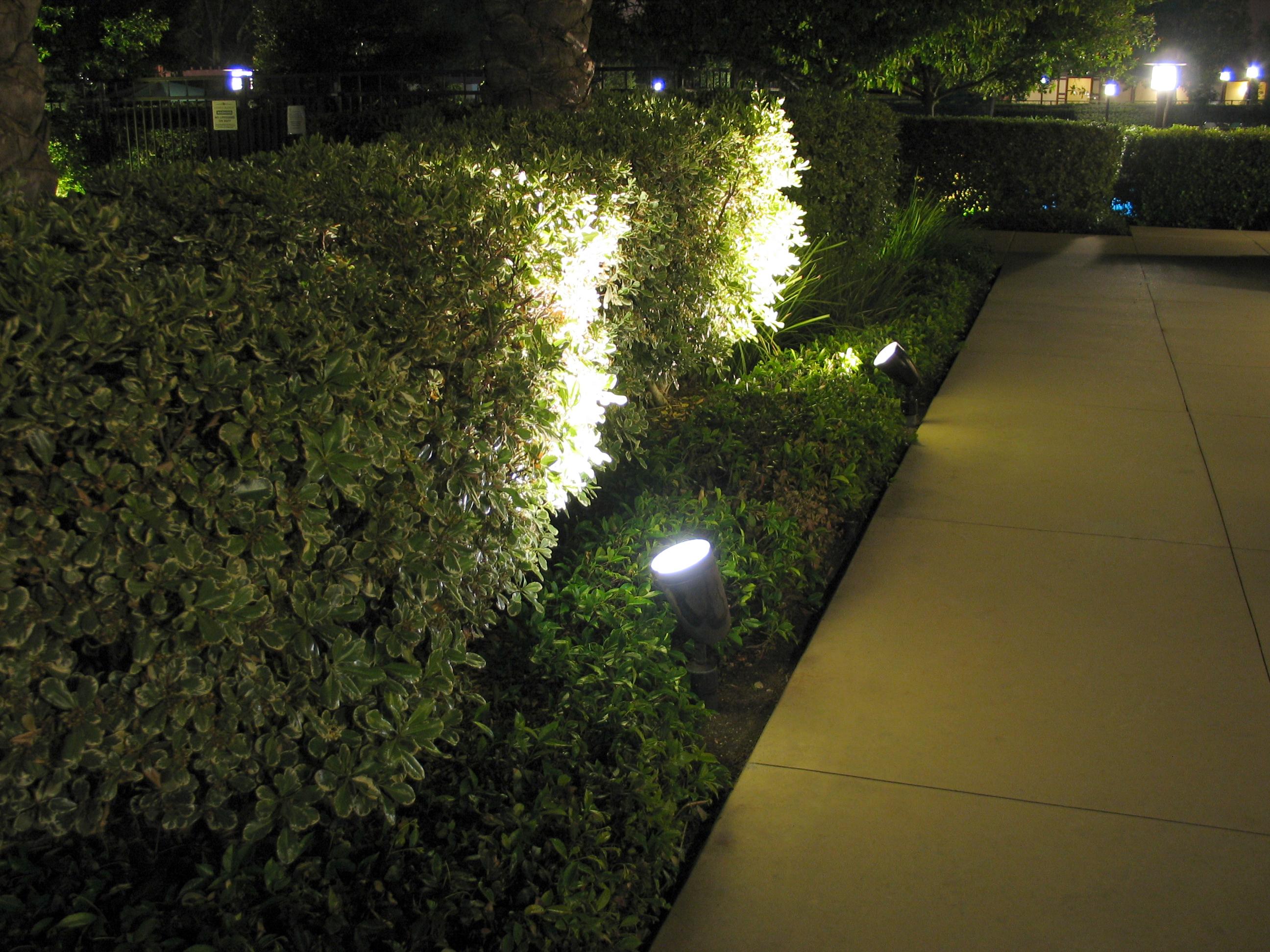 Led Flood Light Bulbs Outdoor