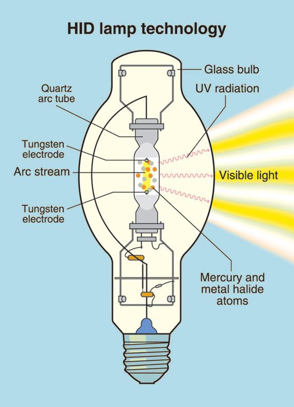 Near Infrared Light Bulb