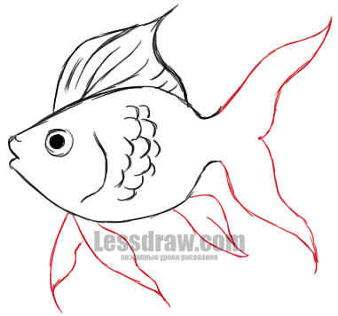 Jak nakreslit zlatou rybku ve fázích