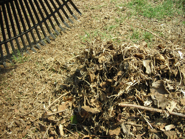 How Get Leaves Out Rubber Mulch