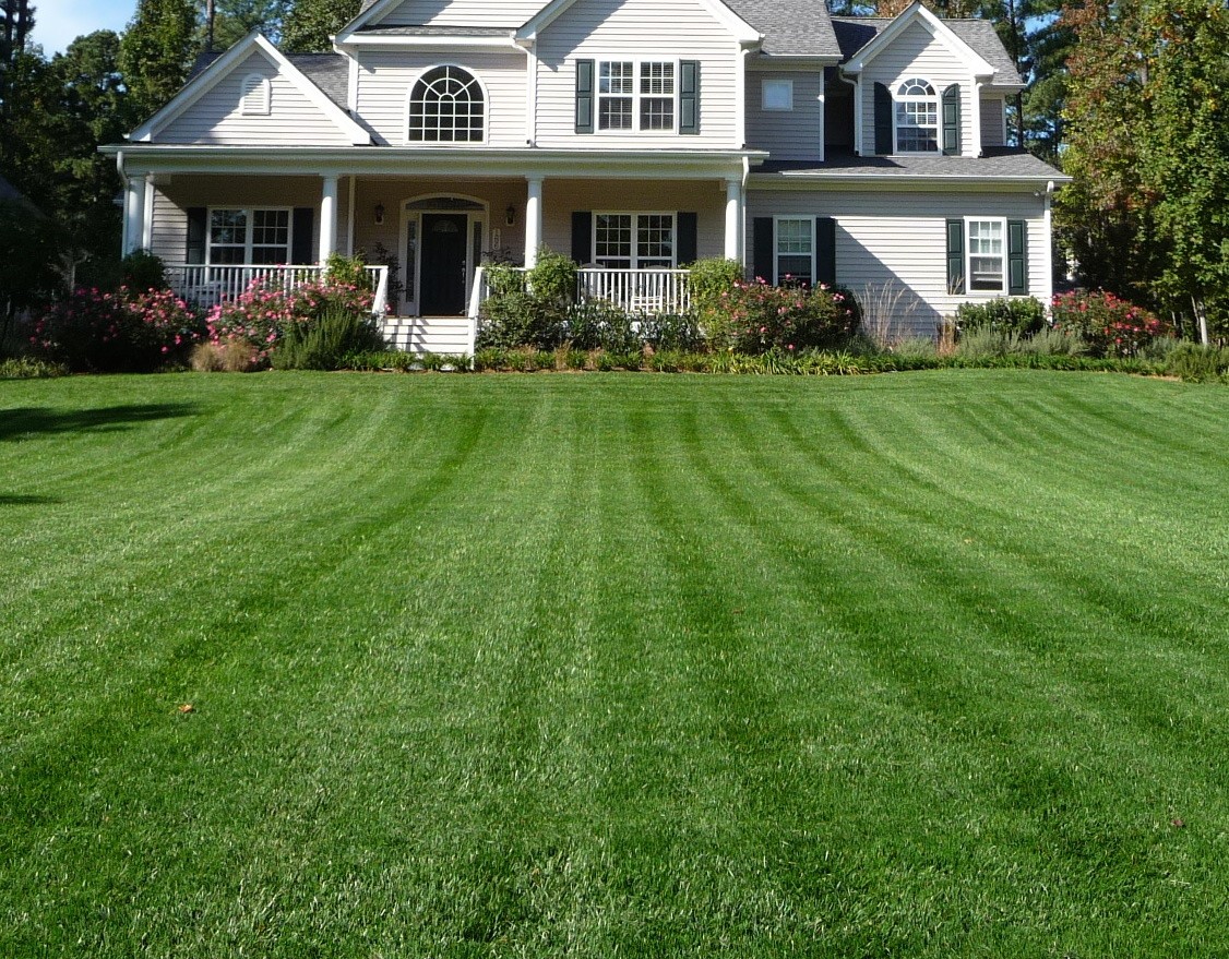 Surrey Lawn Care Services