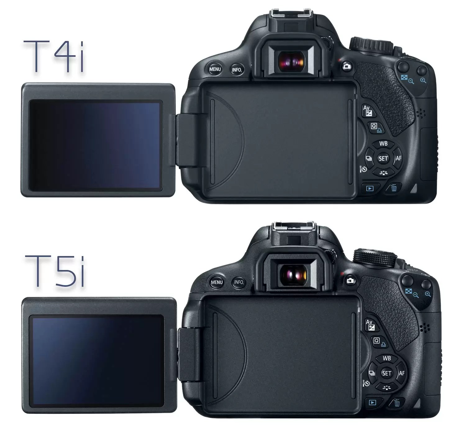 Canon T4i vs T5i  What s the difference    Light And Matter Canon T4i and T5i  back view