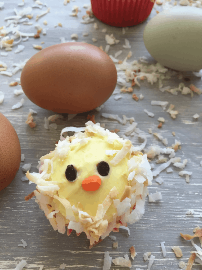 Chicken Cupcakes Cute Birthday Cake For Chicken Lovers