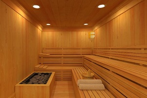 Log Cabins and Lodges with Hot Tubs   Jacuzzi s   Sauna s Traditional Sauna