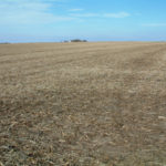 central-illinois-roanoake-farmland-for-sale