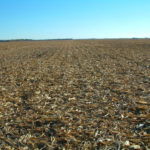 east-central-illinois-champaign-selling-farmland-bachman-estate
