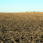 illinois-farm-land-for-sale-by-auction-crop-fields