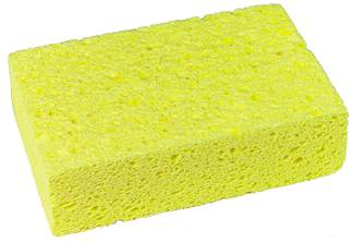 Antibacterial Sponges Lorecentral