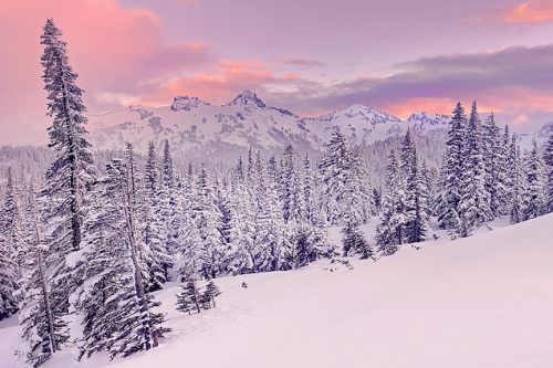 Winter In The Mountains Pictures, Photos, and Images for ...