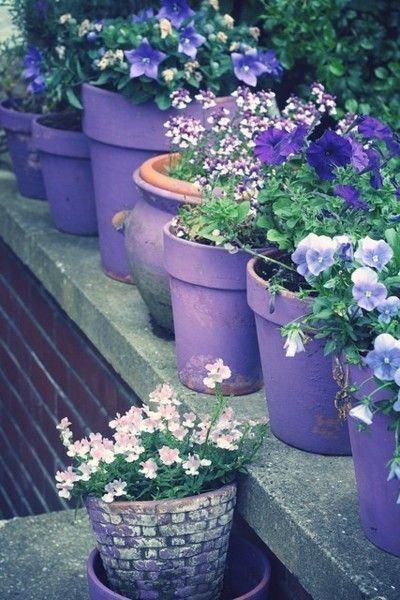 Self Watering Plant Pots