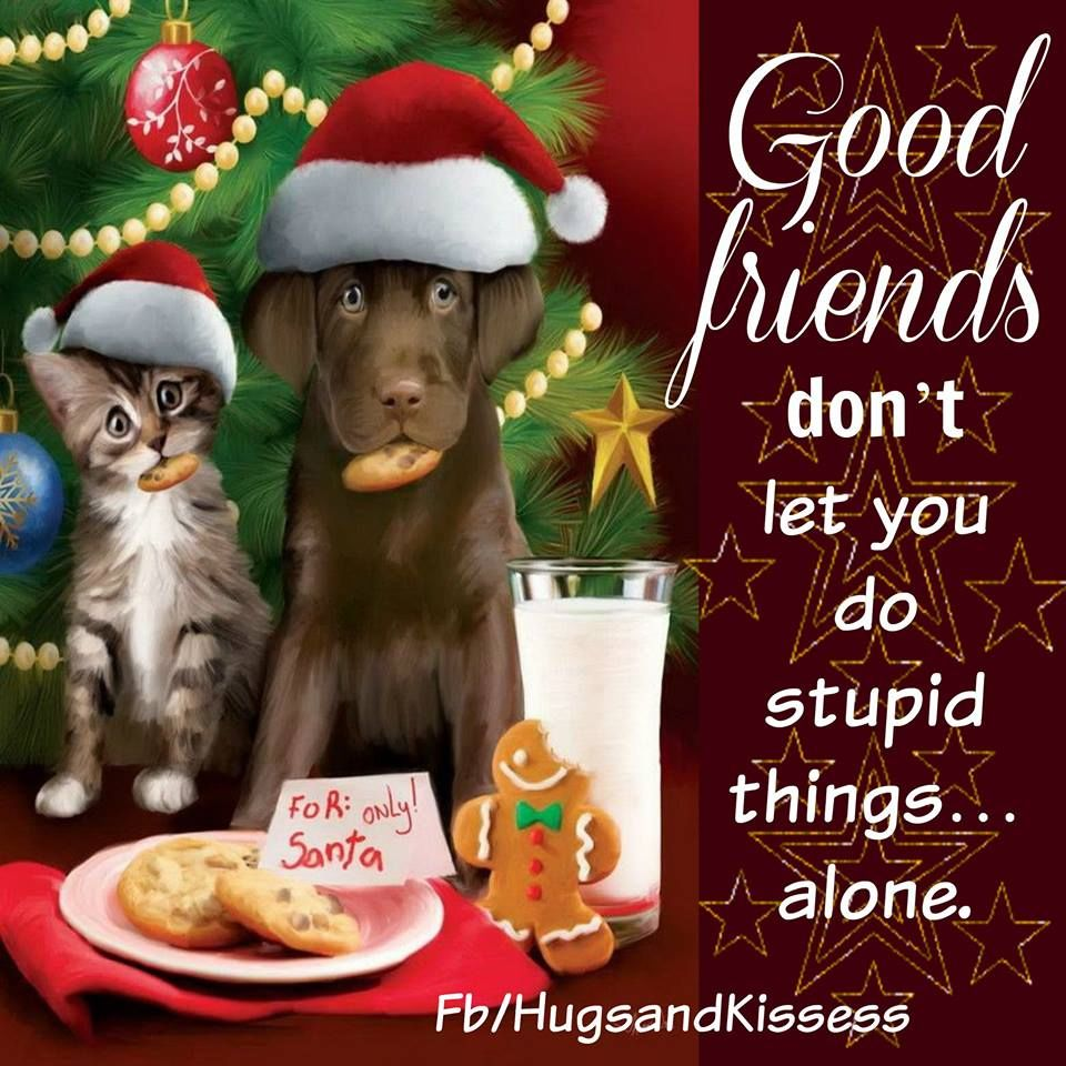 Cute Christmas Quotes About Friendship Pictures, Photos ...