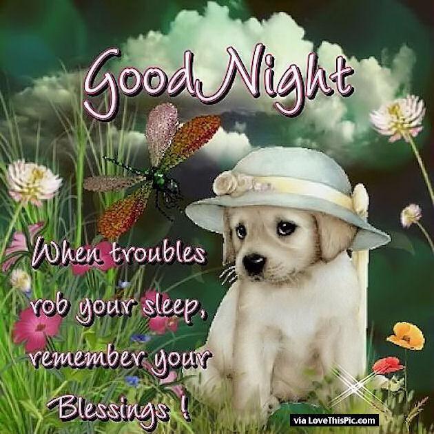 Funny Dreams Night Sweet Animated Good