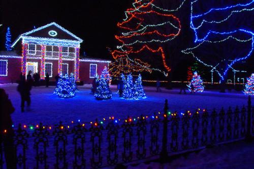 Christmas Lights Multi Colored