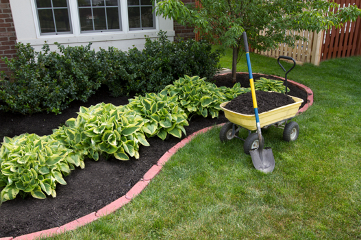 reasons-landscape-mulch