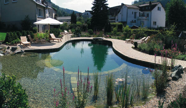 Backyard Swimming Pools And Small Ponds Beautiful