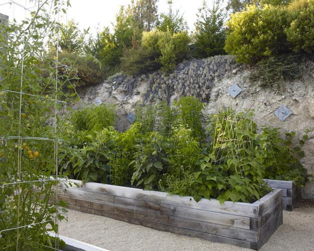 Backyard Raised Vegetable Garden