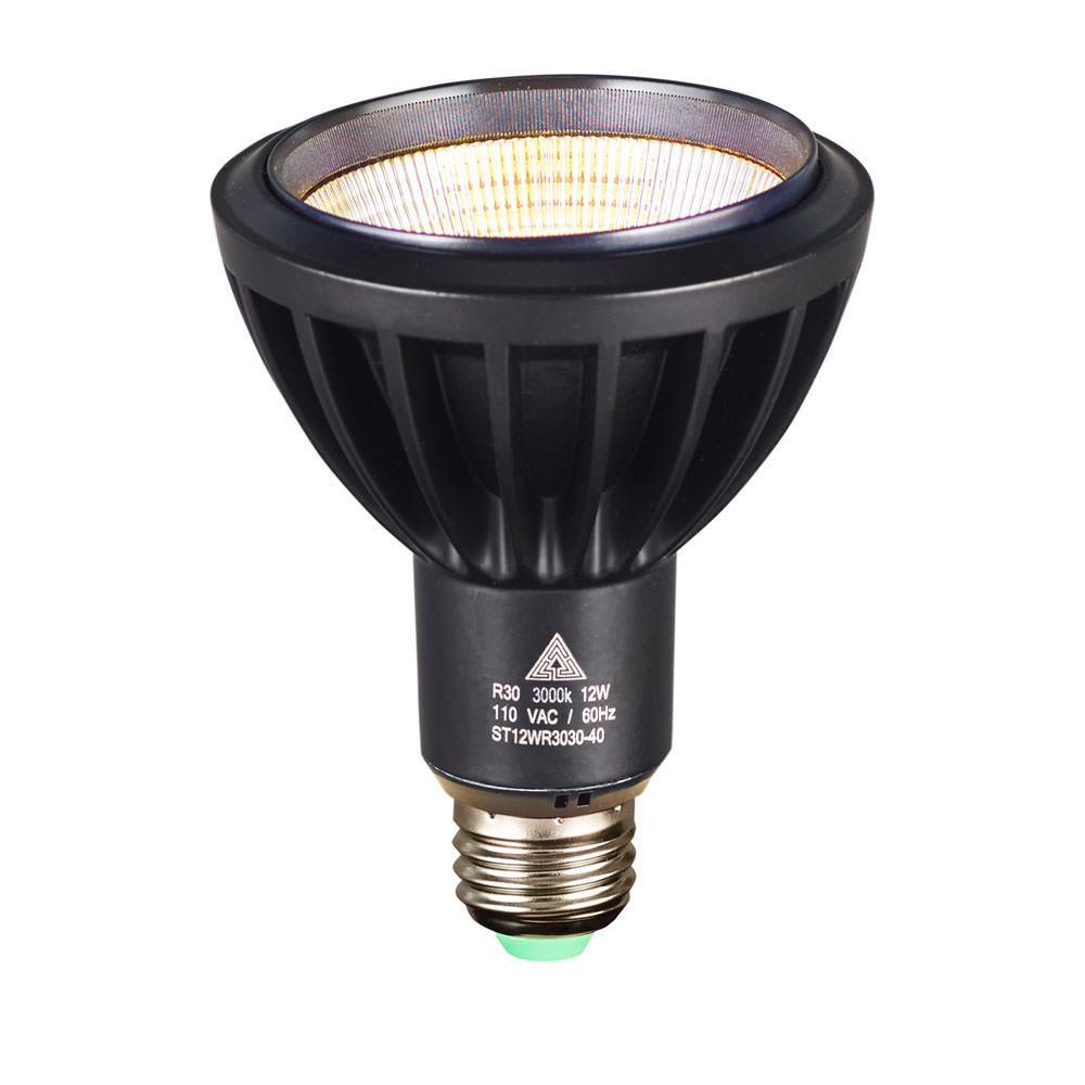 R30 Led Light Bulbs