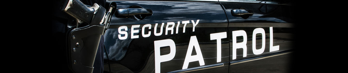 Armed Security Guard Requirements Texas