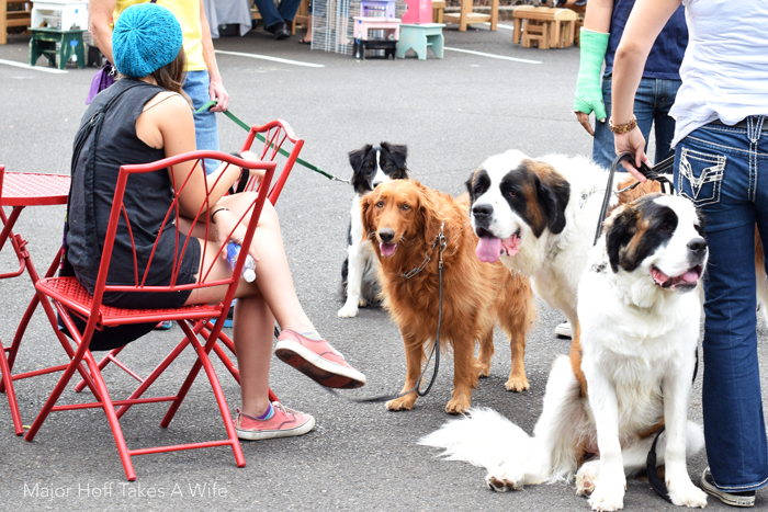 Dogs allowed at the famers market salem