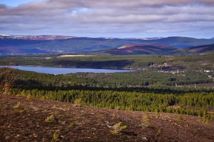 Cairngorm Mountain View : Cairngorm National Park