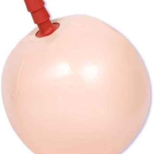 (D) E-Z RIDER BALL W/PLUG BX